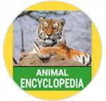 Imagen adjunta: enciclopedia-animal-logo.jpg