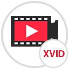 Imagen adjunta: formato codec xvid.png