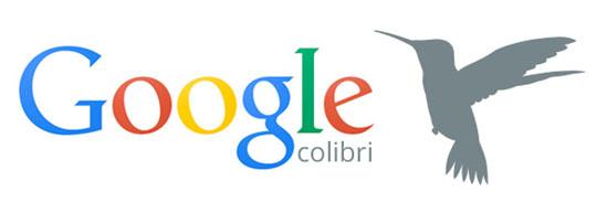 Imagen adjunta: colibri_solvetic.jpg