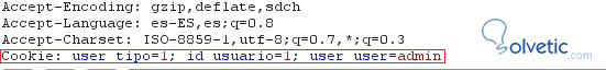 xss_php_solvetic.jpg