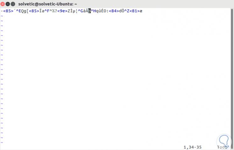 password-vim-en-linux-6.png