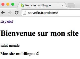 cambiar-idioma-web-4.3.jpg