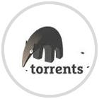 Imagen adjunta: Torrents.me.png