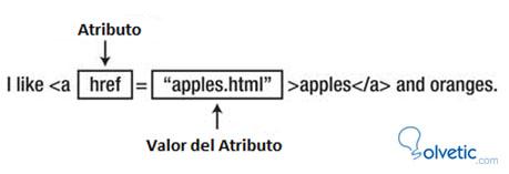 html-atributos.jpg