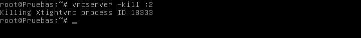 vnc_debian_14.jpg