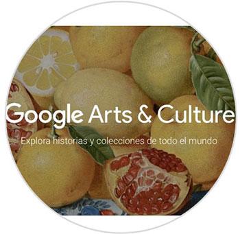 Imagen adjunta: google-cultura.jpg