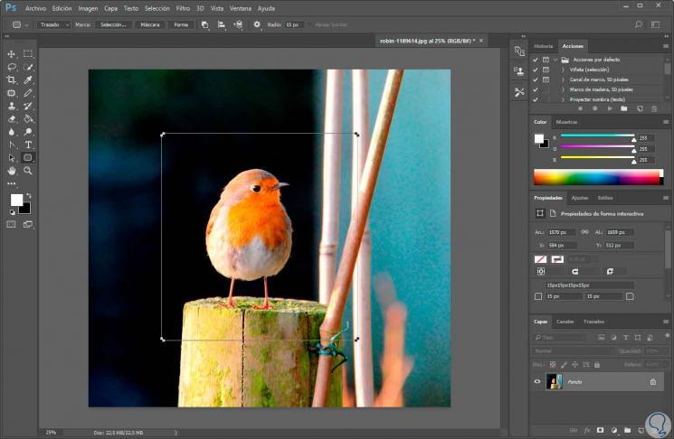 2-crear-forma-redondeada-photoshop.jpg