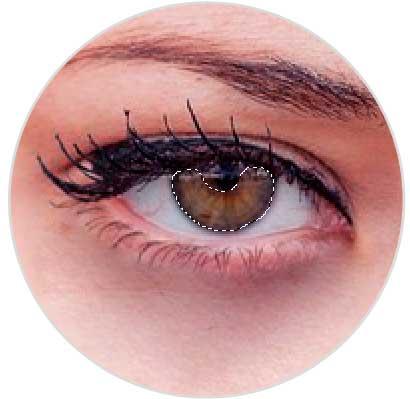 13-selecciona-irirs-ojos.jpg