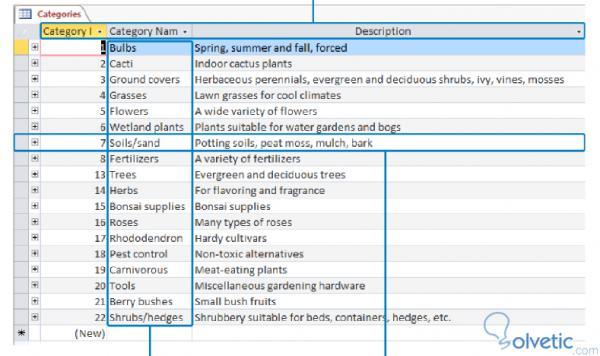 access_explorar_tablets2.jpg
