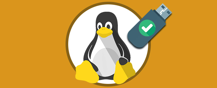 reparar errores usb linux 00.jpeg