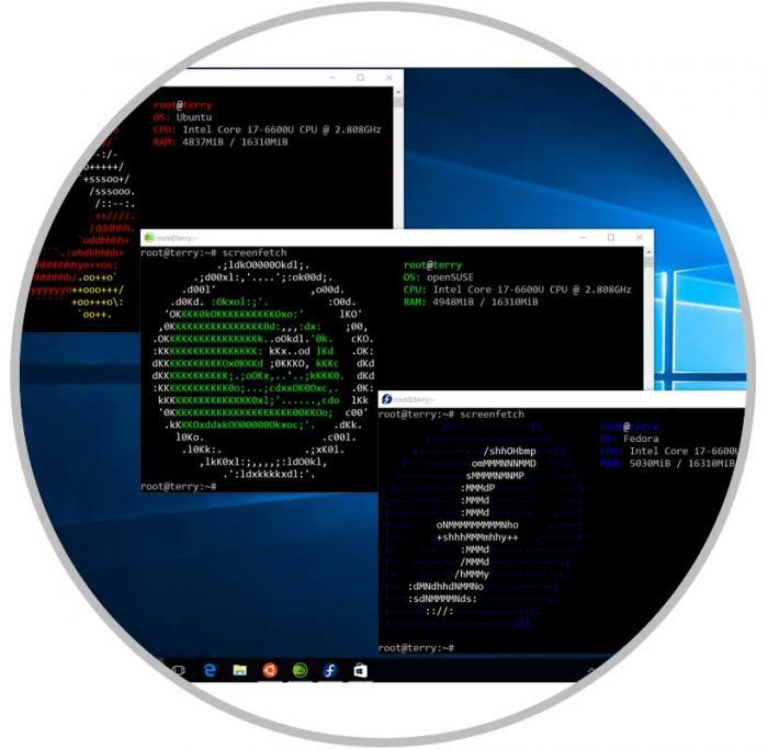 Imagen adjunta: •-Instalar-Ubuntu-Linux-y-otros-subsistemas-desde-Microsoft-Store-9.jpg
