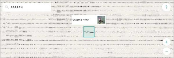 Imagen adjunta: birds-sound.jpg