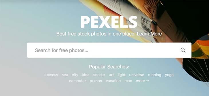 pexels-web.jpg