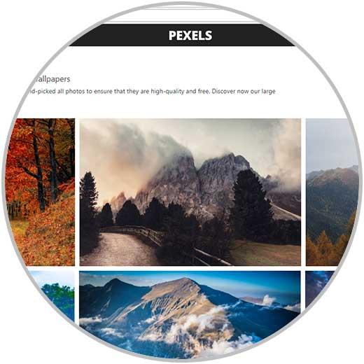 Imagen adjunta: pexel-8.jpg