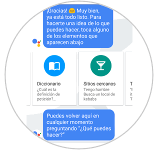 temas-google-assistant-1.png