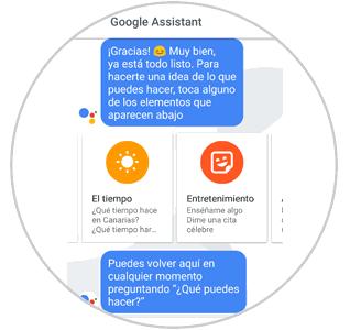 temas-google-assistant.png