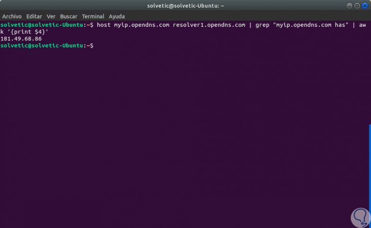 2-Ver-IP-pública-usando-la-utilidad-host.png