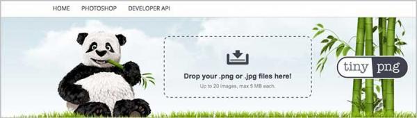 Imagen adjunta: tiny-png-comprimir-imagenes.jpg