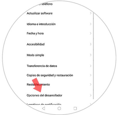 12-opciones-del-desarrollador-huawei-mate-10.png