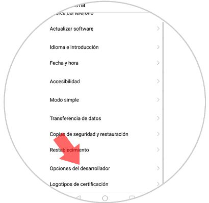 9-opciones-del-desarrollador-huawei-mate-10.png